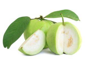 Jumbo Guava-Under Family Farmer Program
