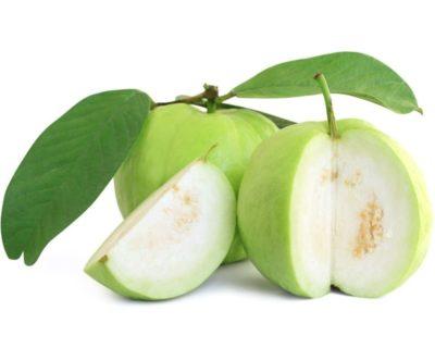 Jumbo Guava, Psidium Guajava (Edible Fruit)