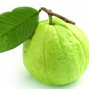 Jumbo Guava 1KG-Under Family Farmer Program